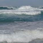 Meer - Ursprung des Lebens
